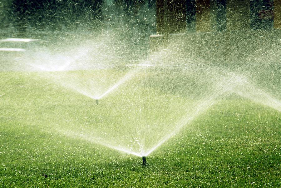 Sprinkler Photo