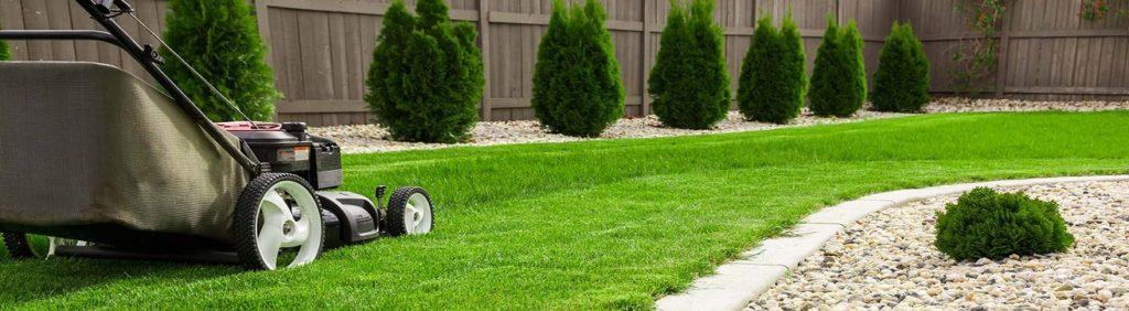Lawn care warren robins ga