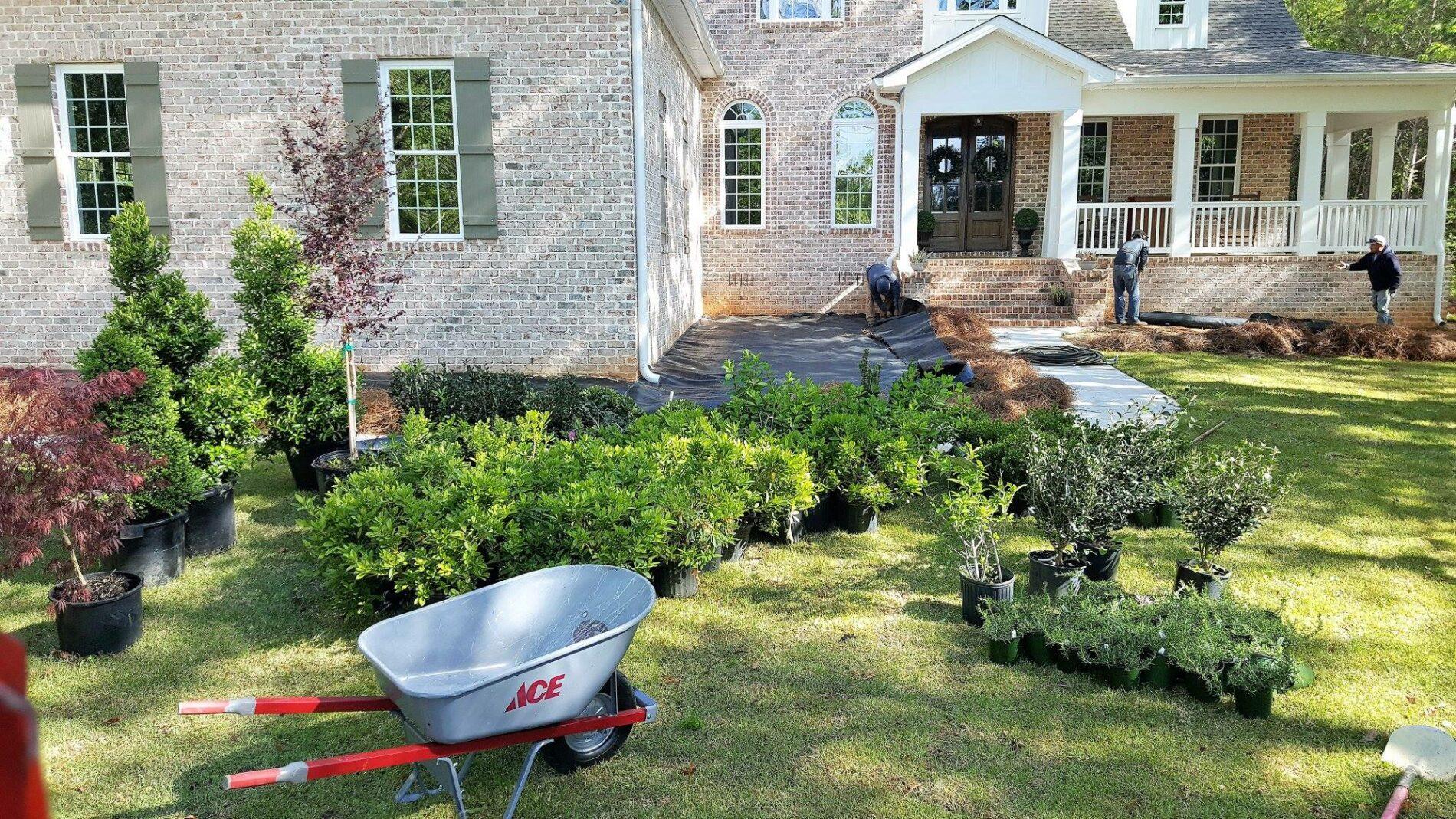 Lawn Maintenance Warner Robins GA