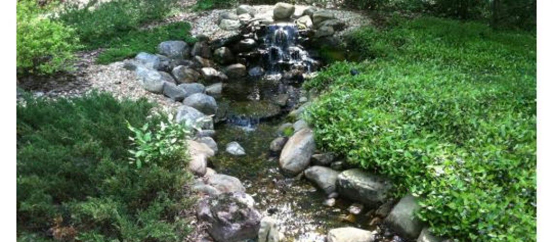 Macon Landscaping Blog